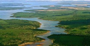 Argentina government approves the creation of the Iberá National Park