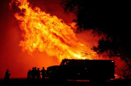Current approach to wildfires risks lives and wastes money