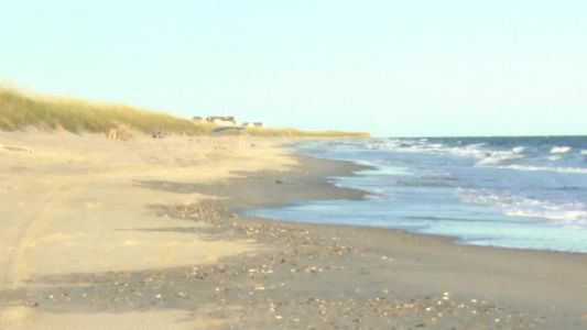 8-year-old bitten by shark; third one reported in NC this month