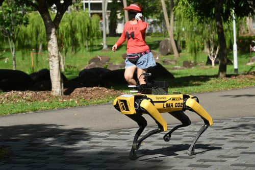 Singapore Enlists Boston Dynamics' Robot Dog to Enforce Social Distancing in Parks