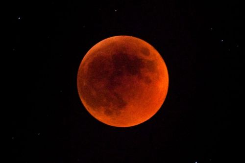 Here's How To Watch Next Week's 'Super Flower Blood Moon'